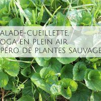 Balade, Yoga en plein air & apéro de plantes sauvages - AYTRE