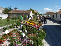 ATELIERS ART NATURE - MARENNES